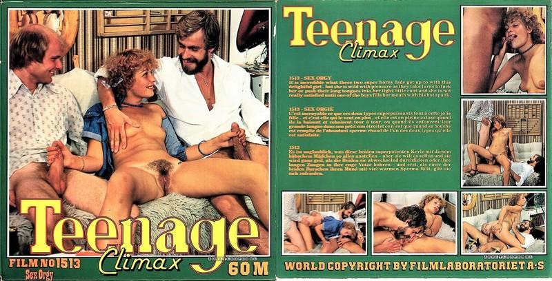 Teenage Climax - Sex Orgy (1970s) VHSRip