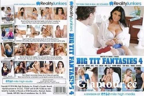 Big Tit Fantasies 4 [SD]