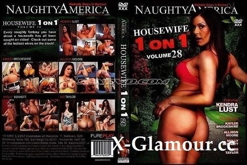 Housewife 1 On 1 - Vol. 28 [SD]