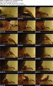 PORNRIP.US_CrazyMovie10.mp4.jpg