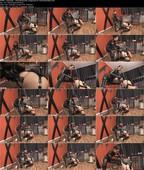 LadyGinga_-_Latexhandschuhe-_gystyle-XL-Anal-Behandlung.jpg