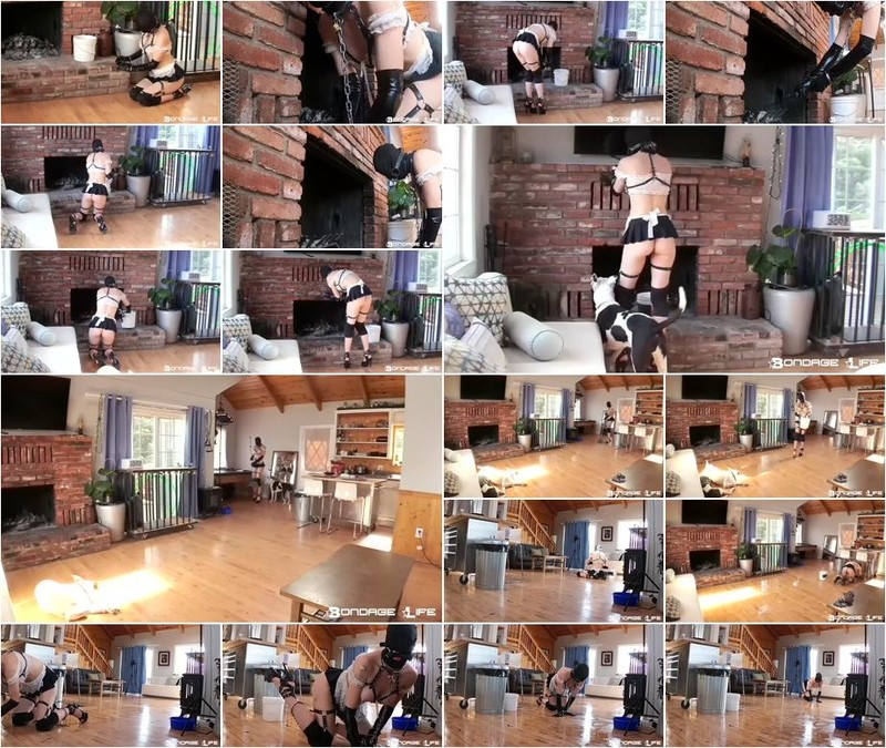 Rachel Greyhound - House Cleaning (720p)