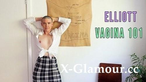 Elliott - Vagina (2021/SD)