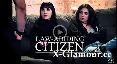 Law-Abiding Citizen [SD]