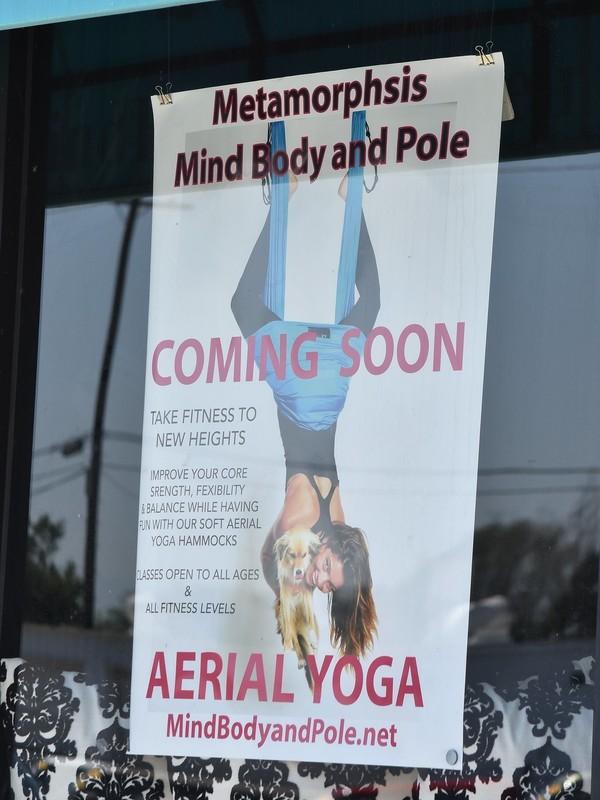 flexy yoga girl Selma Blair in sexy navy blue yogapants