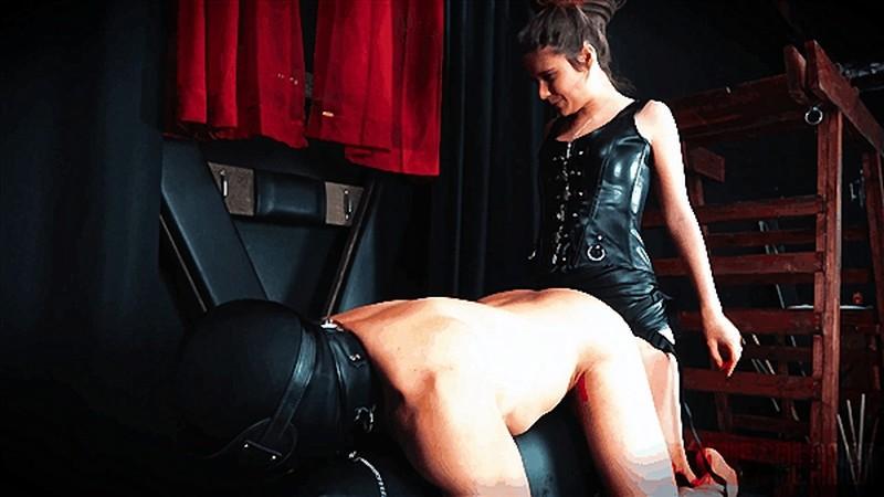 Queen Aryal - Making You My Cum Dumpster - Watch XXX Online [FullHD 1080P]