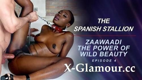 Zaawaadi - The Spanish Stallion Zaawaadi The Power Of Wild Beauty Episode 4 (SD)